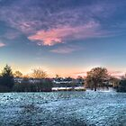 Harrowlodge Park HDR 02 by Peter Barrett