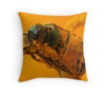 Bee & Pollen Throw Pillow