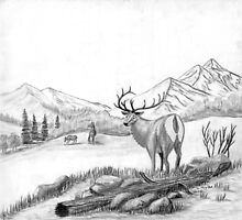 Elk - Charcoal by Gordon Pegler