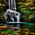Magnolia Waterfall by Scott Ward