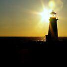 Light of Light.... Brighten a Darken Sky... by Larry Llewellyn