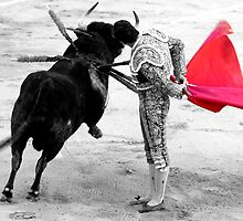 Matador and Bull. 4 by craigto