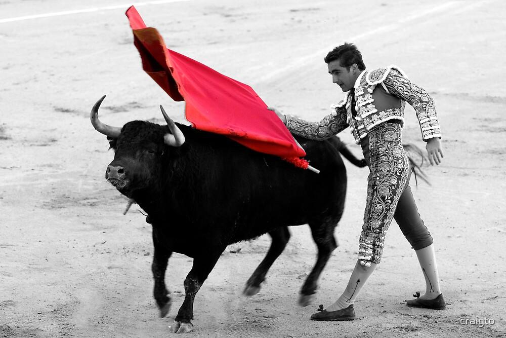 Matador and Bull. 5 by craigto