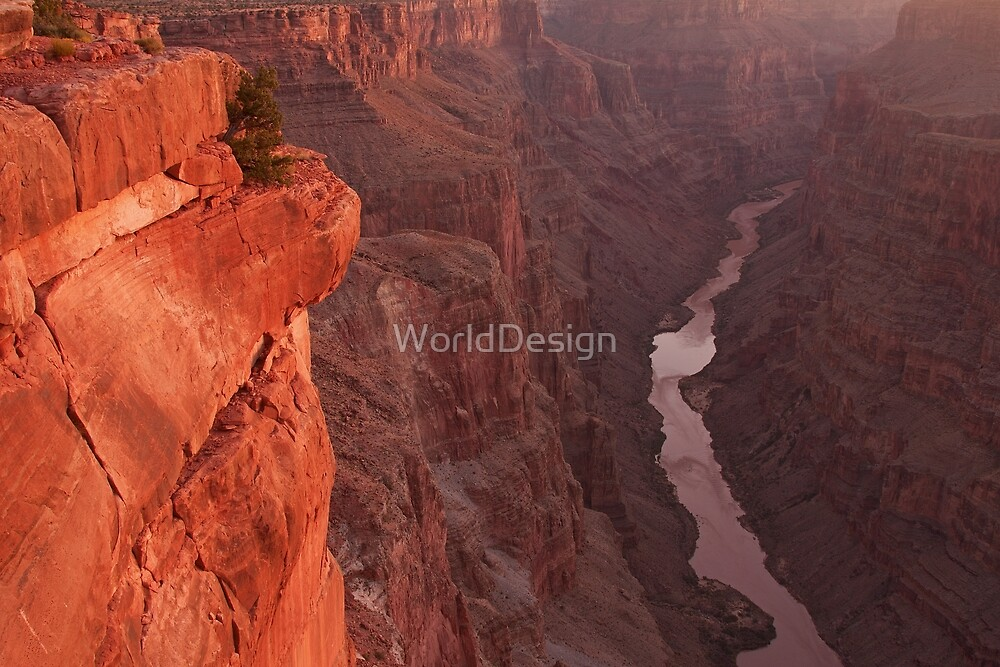 Toroweap Sunrise by William C. Gladish, World Design