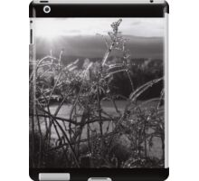 IceRise iPad Case/Skin