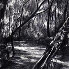 The Landscape by saniismail