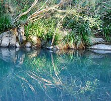 Mirrored Image of Dingo Creek  by Bev Woodman