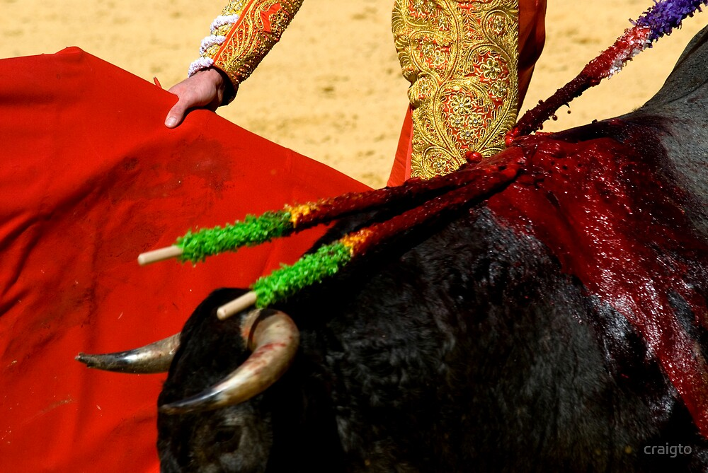Matador and Bull Up Close. by craigto