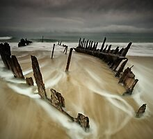 Stormy Dickie by Annette Blattman