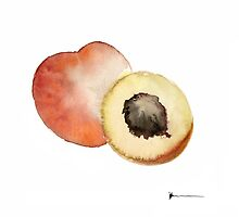 Peaches artwork watercolor poster  by Joanna Szmerdt
