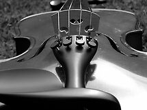 Violin B&W by MaddyPaddy