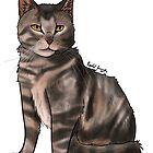 Kitten by Shnooky6