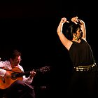 Jerez Flamenco. 1 by craigto