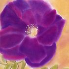 Pink purple pastel flower  by Melissa Goza