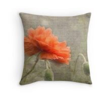 100 Years - In memory of fallen soldiers WW1 Throw Pillow