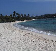 sapphire beach by Holly Martinson