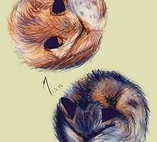 Foxies by Natalie Easton