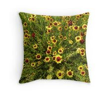 rug of flowers Throw Pillow
