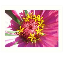 yellow crown for a beauty in pink Art Print