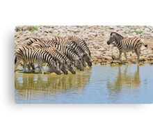 Zebra - African Wildlife - Lined up for Life Canvas Print