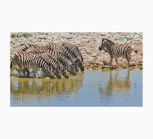 Zebra - African Wildlife - Lined up for Life Kids Tee
