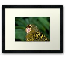 Where are you?? Framed Print