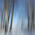 Path of Dreams by Bill Morgenstern