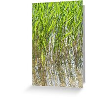Swaying in the Wind Greeting Card