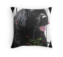 Fresh Flying Drool Throw Pillow