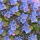 Pink & Blue Flowerlets by Kristen Joy Tunney