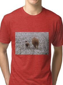 sheep and lambs in the snow Tri-blend T-Shirt