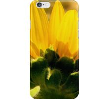 Nature's Beauty   ^ iPhone Case/Skin