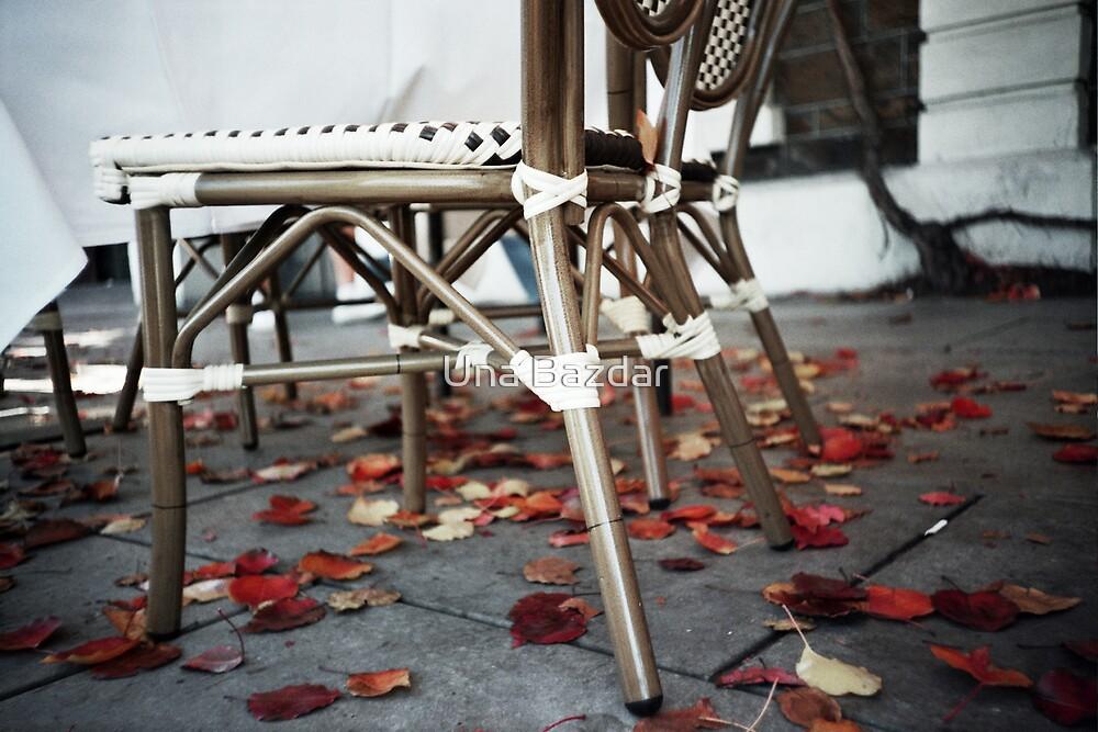 Adelaide Autumn by Una Bazdar