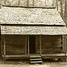 John Ownby's Cabin II by Gary L   Suddath