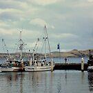Harbour by Una Bazdar