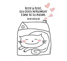 Les chats... l'âme de la maison / Cat Doodle Photographic Print