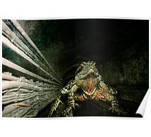 water dragon Poster