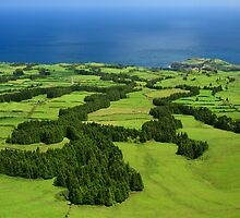Typical Azores landscape by Gaspar Avila