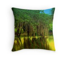 Golden Lagoon Throw Pillow
