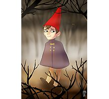 Wirt in the woods Photographic Print