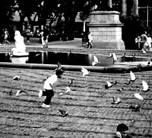 Chasing Pigeons by Joanna Lim