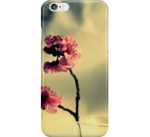 Pink Blossoms And Vase iPhone Case/Skin