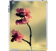 Pink Blossoms And Vase iPad Case/Skin