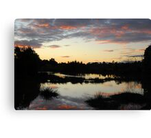 Lake in Suburbia Canvas Print