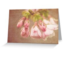 Spring Time - Pink Blossom Textured Greeting Card