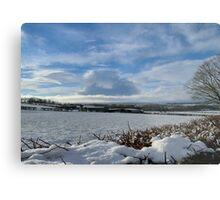 White Winter , Blue Winter Metal Print