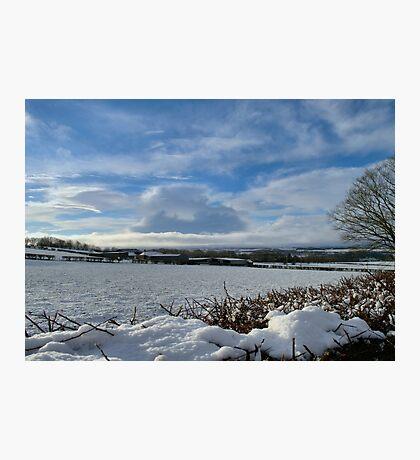 White Winter , Blue Winter Photographic Print