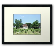 home winery Framed Print