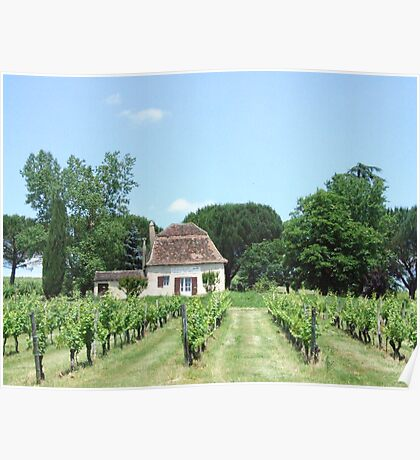 home winery Poster