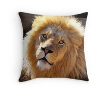 Beauty is the Beast Throw Pillow